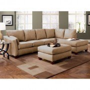 Drew Right Facing Chaise Sectional (Straw)